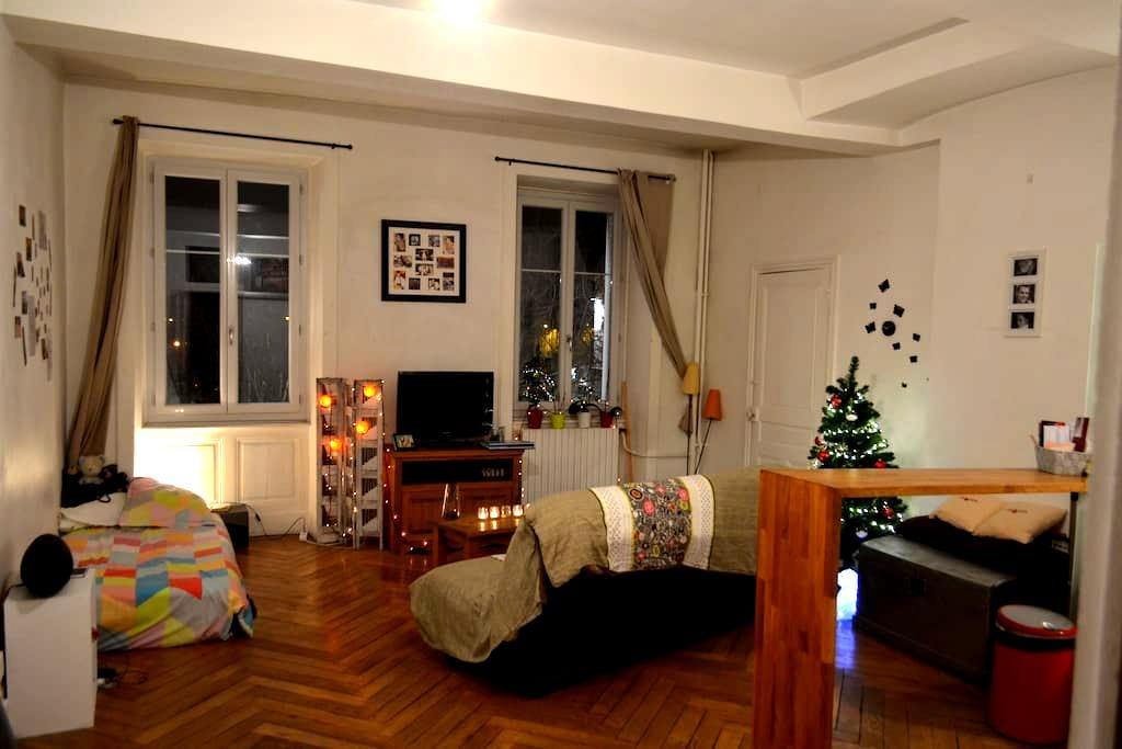 Studio avec cachet en Hyper Centre - Bourg-en-Bresse - Lägenhet