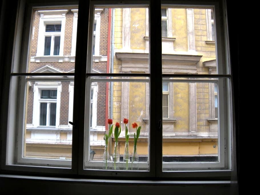 Cozy Room 5min from Old Town Square - Praha - Byt