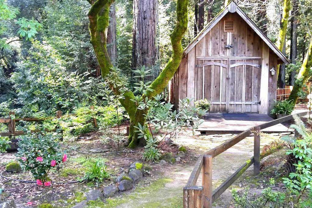 Creekside Redwood Cabin Santa Cruz - Soquel