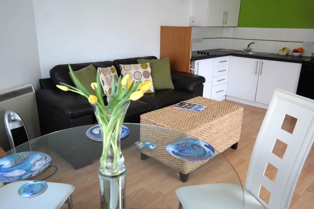 Garden Apartment annexe - Dartmouth - Daire