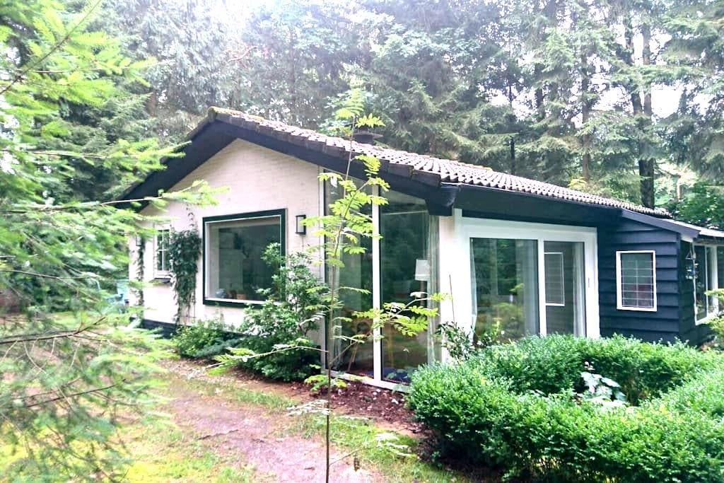 Cozy cottage in the Veluwe - Epe - Chalet