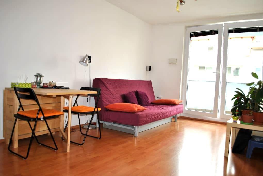 Ubytovanie v byte v novostavbe - Svätý Jur - Apartment