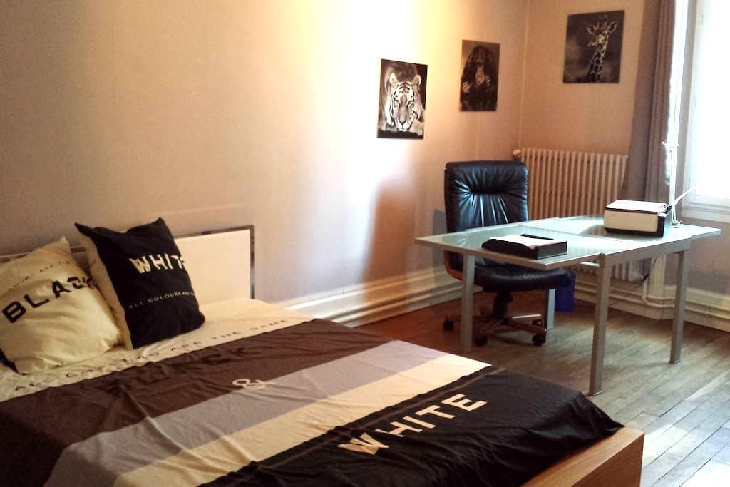 Valence centre chambre spacieuse et calme - Valence - Appartement