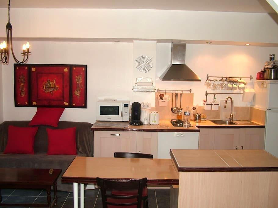 joli studio meublé tout confort - Sérignan - Daire