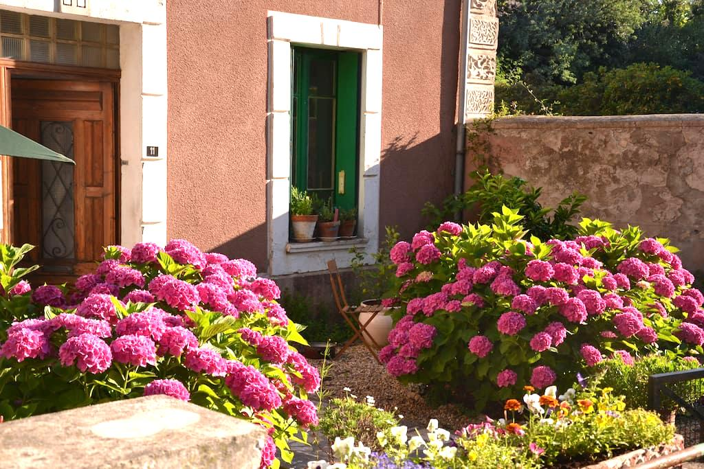 South of France Country Apartment - Embres-et-Castelmaure - House