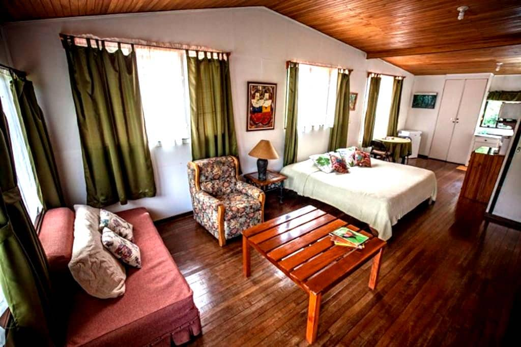 Casa Balbi Studio Apartment - Monteverde - Apartment