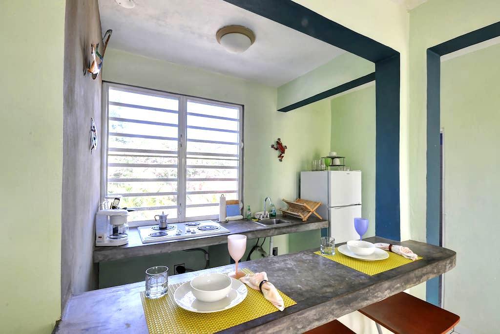 Esperanza 1 Bedroom Ocean View (4) - Vieques - Huoneisto