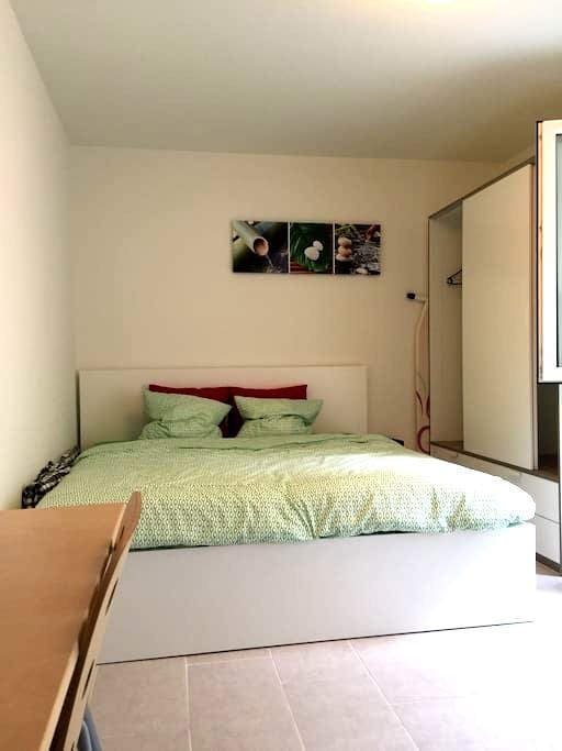 Furn. appartment with king-size bed + fast WIFI - Basel - Leilighet