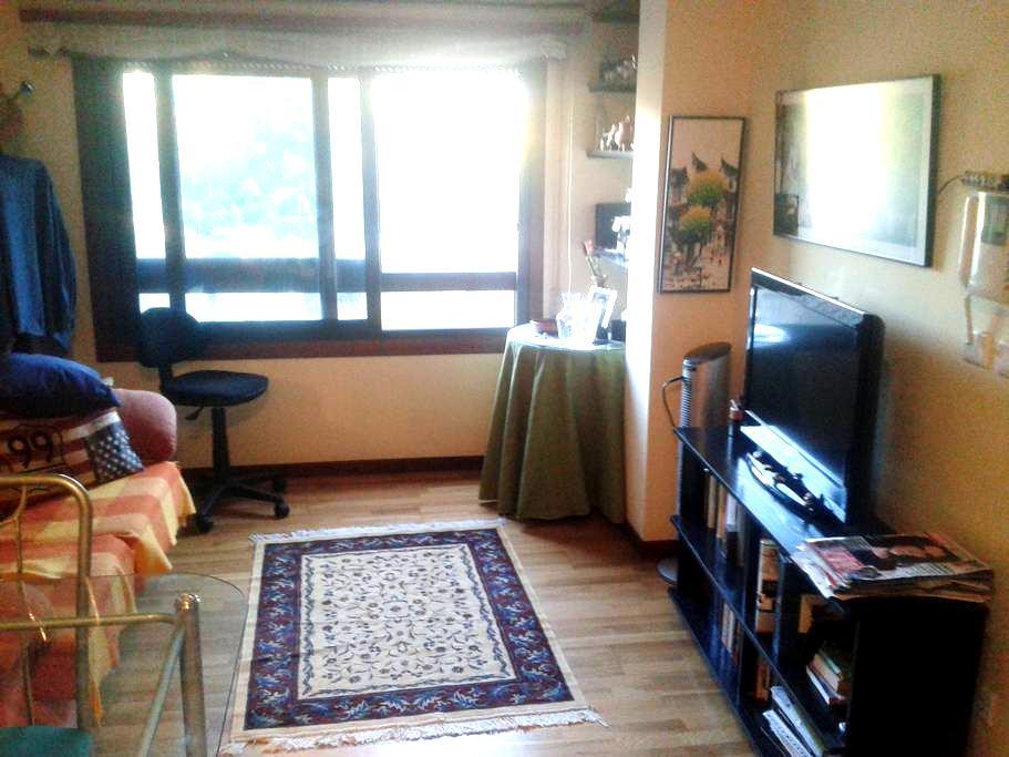 Cómodo apartamento a 2 minutos de Plaza América - Vigo - Apartemen