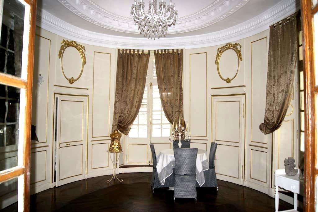 Chambre d'hôte, maison de caractère (Royale) - Vicq-d'Auribat - Bed & Breakfast