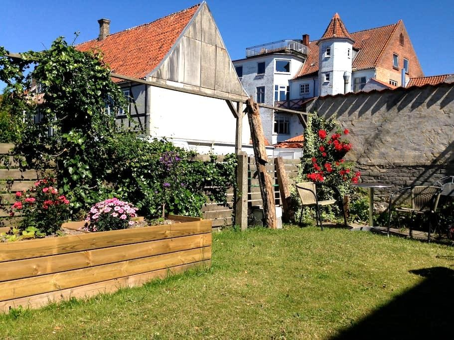 By the city square and the harbour - Faaborg - Radhus