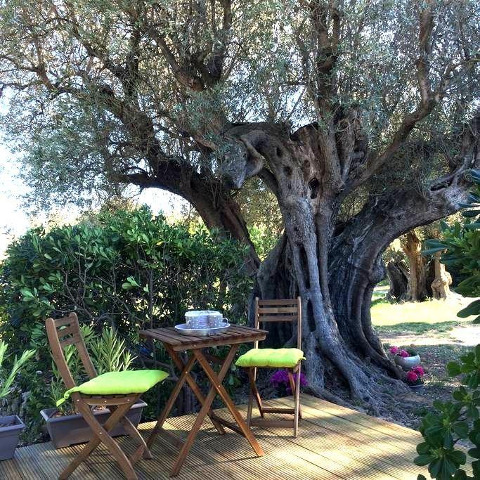 Chambre d'hôtes champêtre - Sanary-sur-Mer - Bed & Breakfast