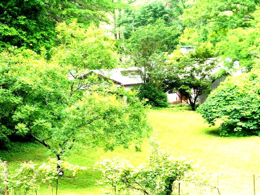 Get-Away Cottage on Horse Farm - Луисвилль - Дом