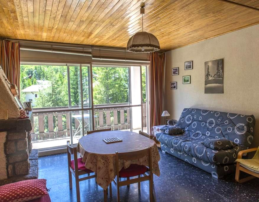 Beautiful apartment in front of ski - La Salle-les-Alpes
