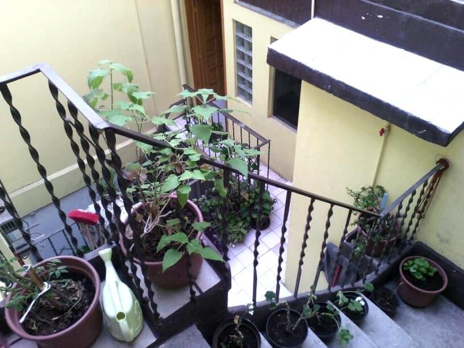 Economical and well located room - 墨西哥城(Ciudad de México) - 公寓
