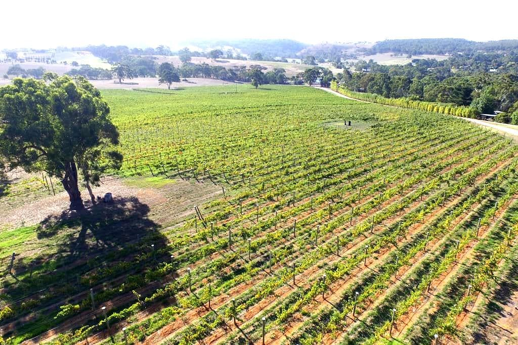 Adelaide Hills vineyard studios - Macclesfield - Inny