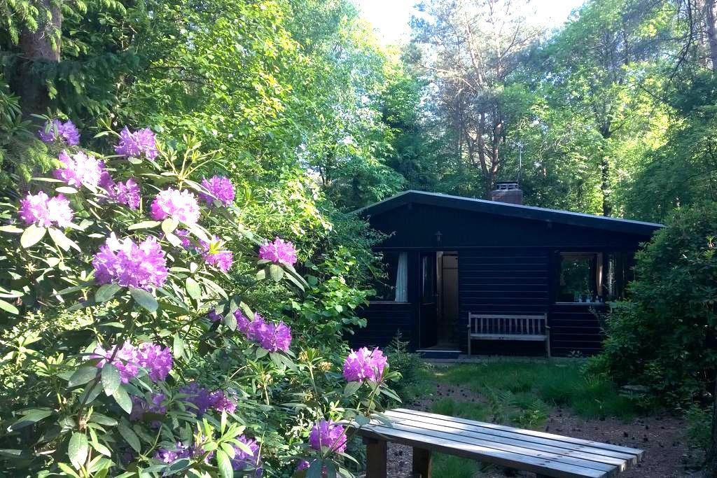 Super-fijne bosbungalow in Vechtdal - Giethmen - 小屋