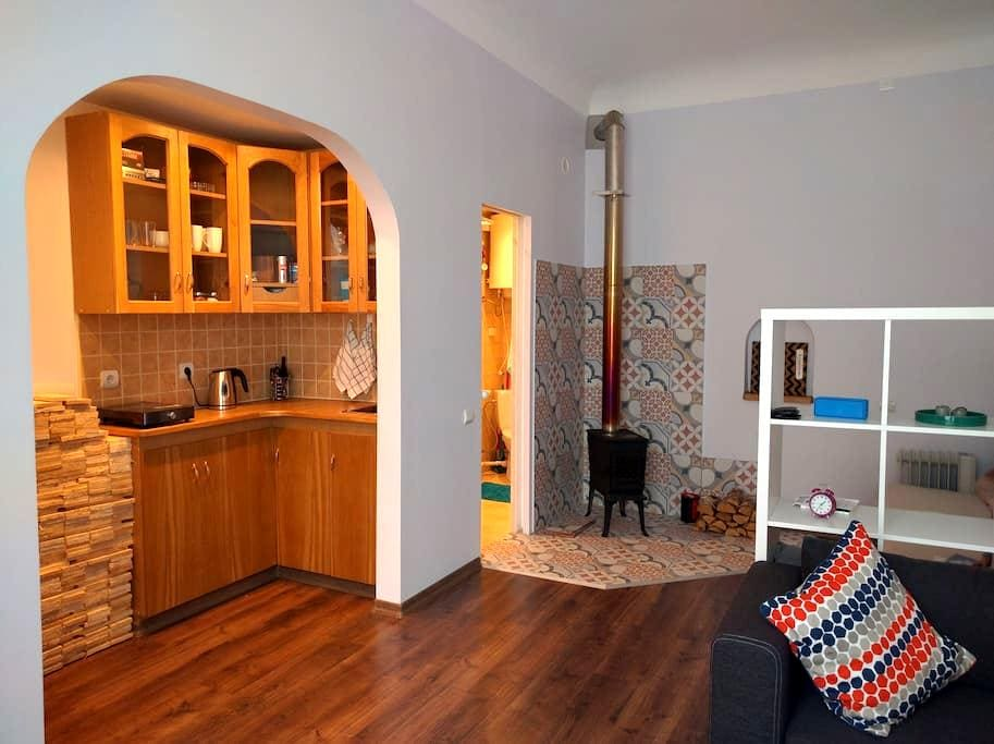 Studio apartment with fire place - Riga - Daire