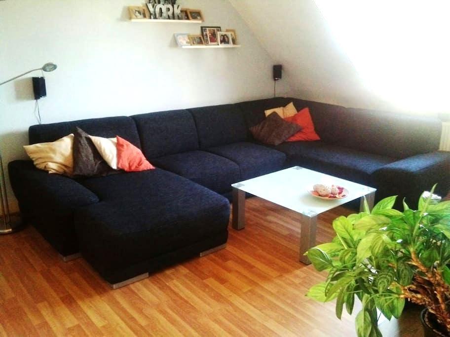 Private & Cozy Room  - Karlsruhe - Leilighet