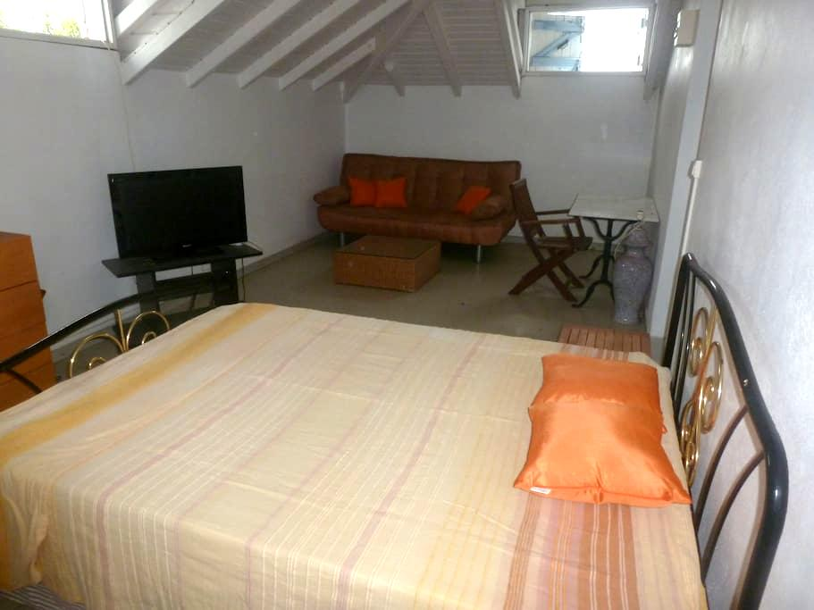 confortable f2 - Basse-Terre - Apartment