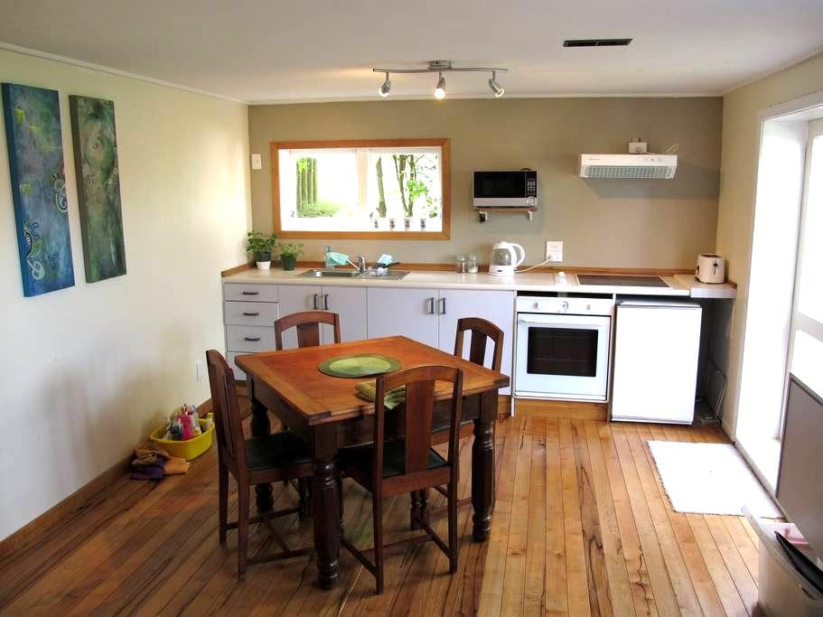 Drive in on Devon - New Plymouth - Apartment