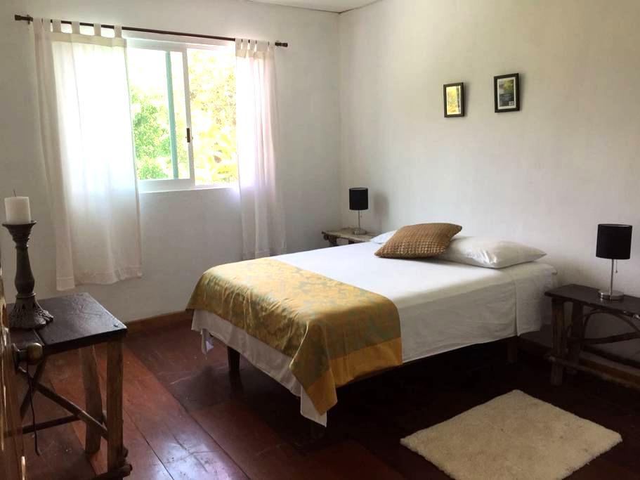 Habitación doble en la selva de Palenque (1) - Palenque - Casa de huéspedes