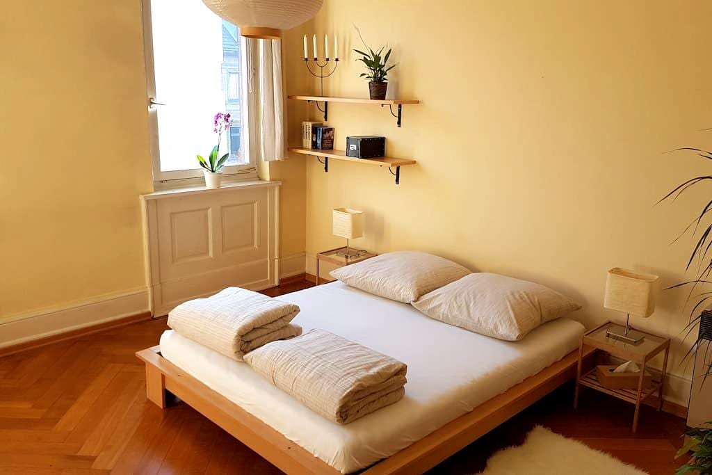 Gemütliches Zimmer in Stuttgart-Mitte - Stuttgart - Wohnung