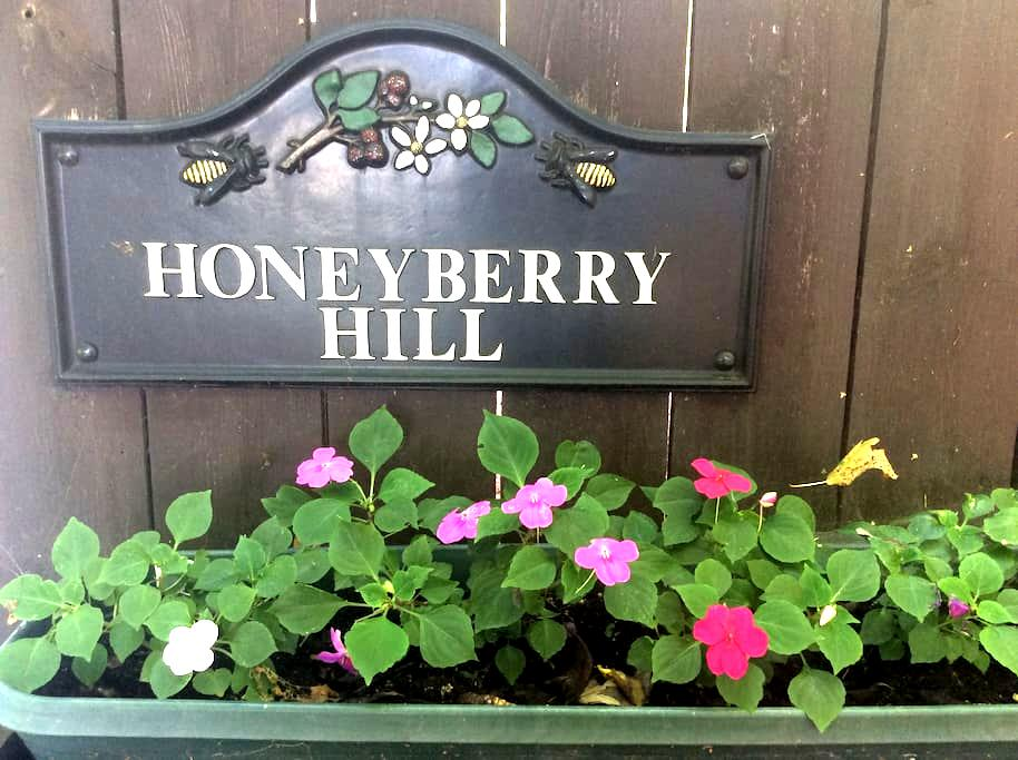 """Honeyberry Hill """"Southern Exposure"""" - Ithaca - Bed & Breakfast"""
