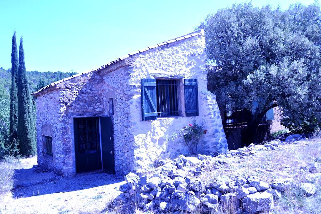 Petite maison au calme dans verdure - Régusse - Haus