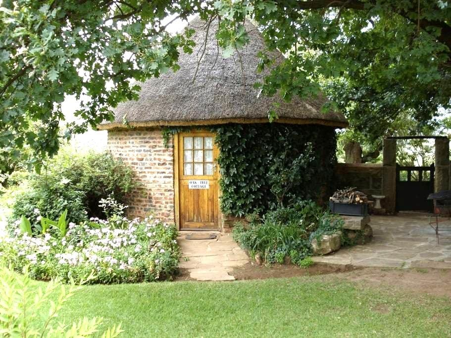 Oak Tree Cottage on De Molen Farm - Clarens - Chalet