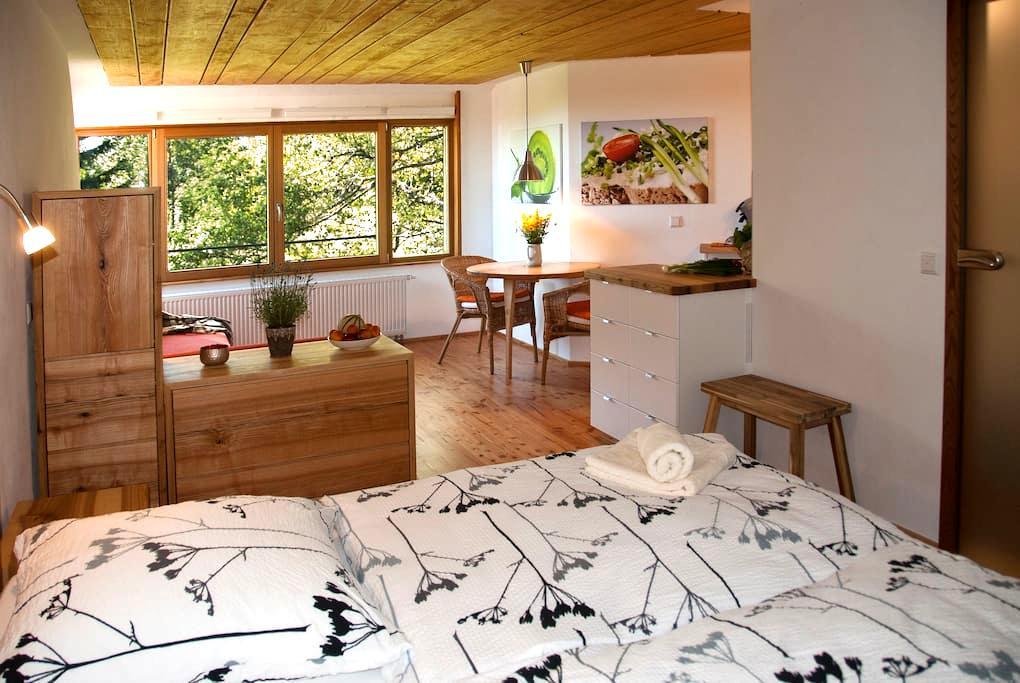 Birkensicht 2 im Schwarzwald Ferienappartement Ost - Herrischried