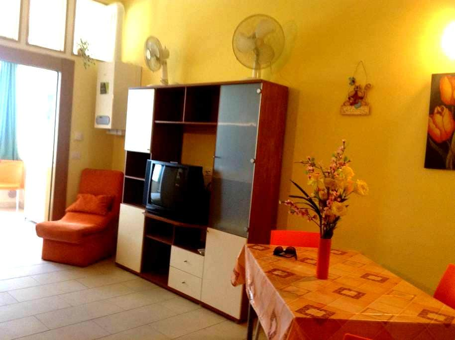 Lovely beachfront flat near Pescara - Montesilvano - Wohnung