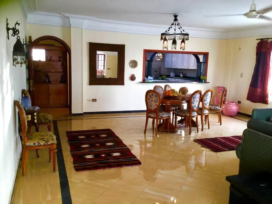 Penthouse with Moroccan fountain  in Maadi, Cairo - Maadi Digla - Apartment