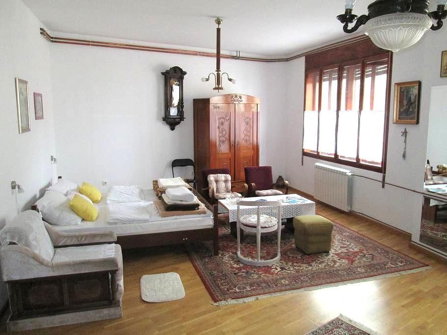 Zlatna soba - Novi Sad - Appartement