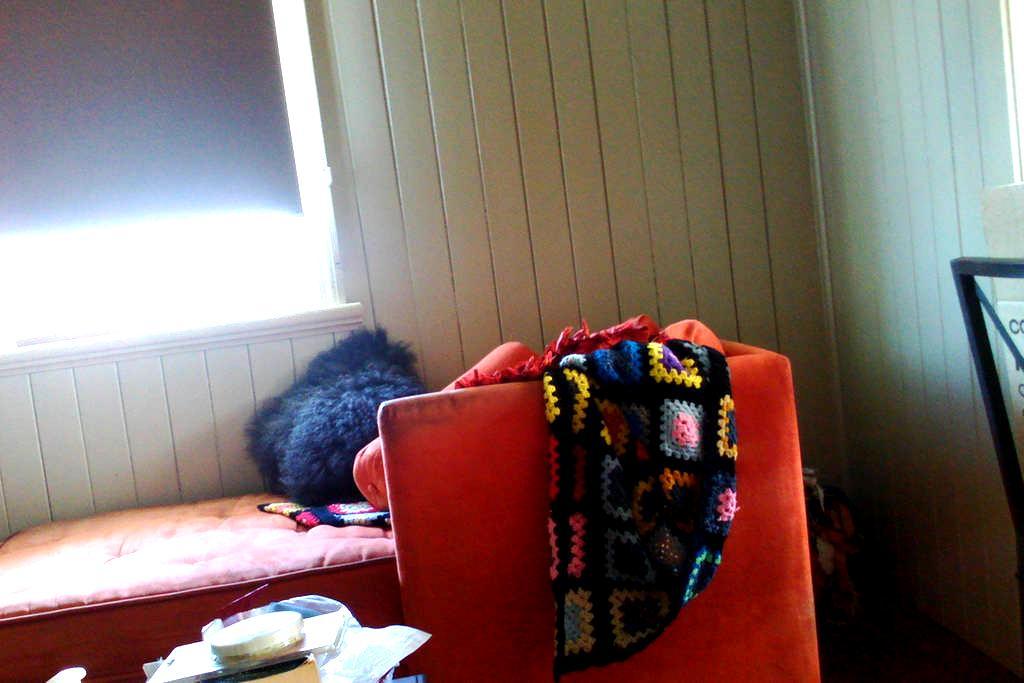 Cosy comfortable room - Newtown - Bed & Breakfast