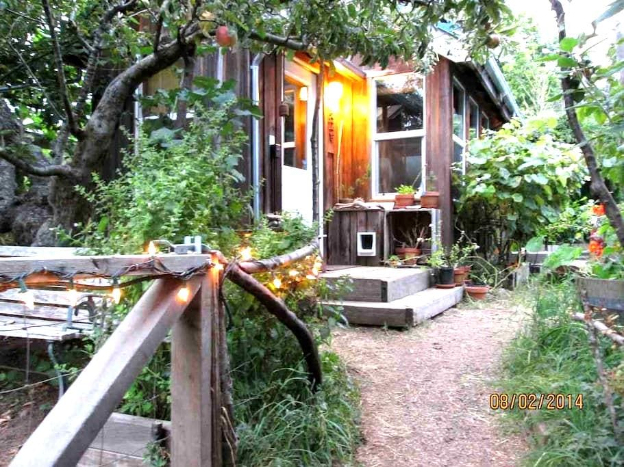 Secluded Eco-Cottage - Arcata - Hytte
