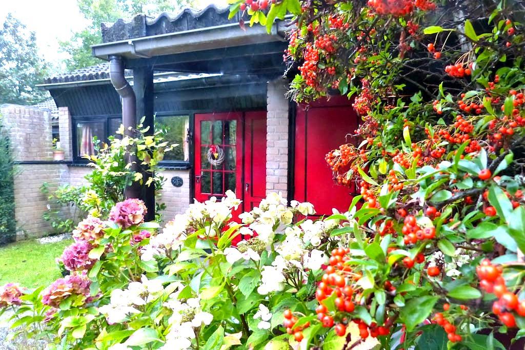 Casa Oasa - Erholung pur! - Oude-Tonge - บ้าน