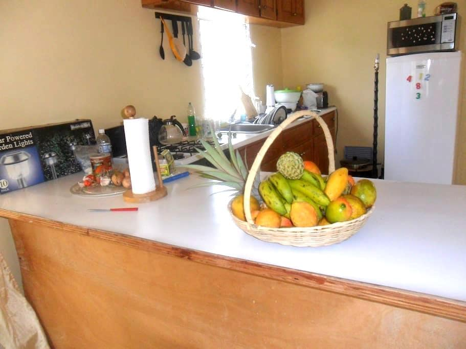 BananaCottage TreasureBeach Jamaica - Treasure Beach - House