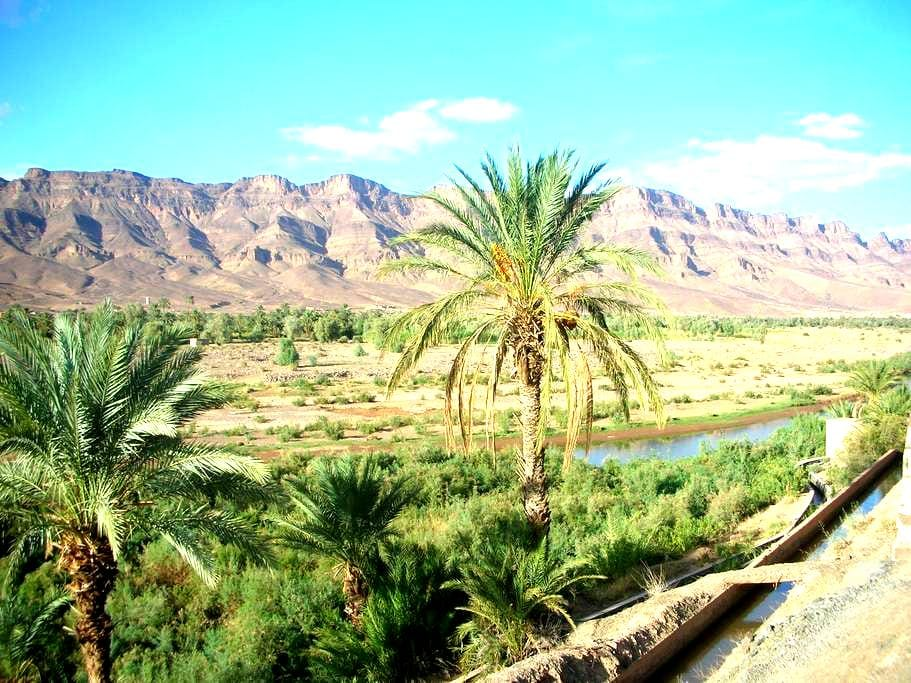 Discover the beauty of the desert  - Mhamid