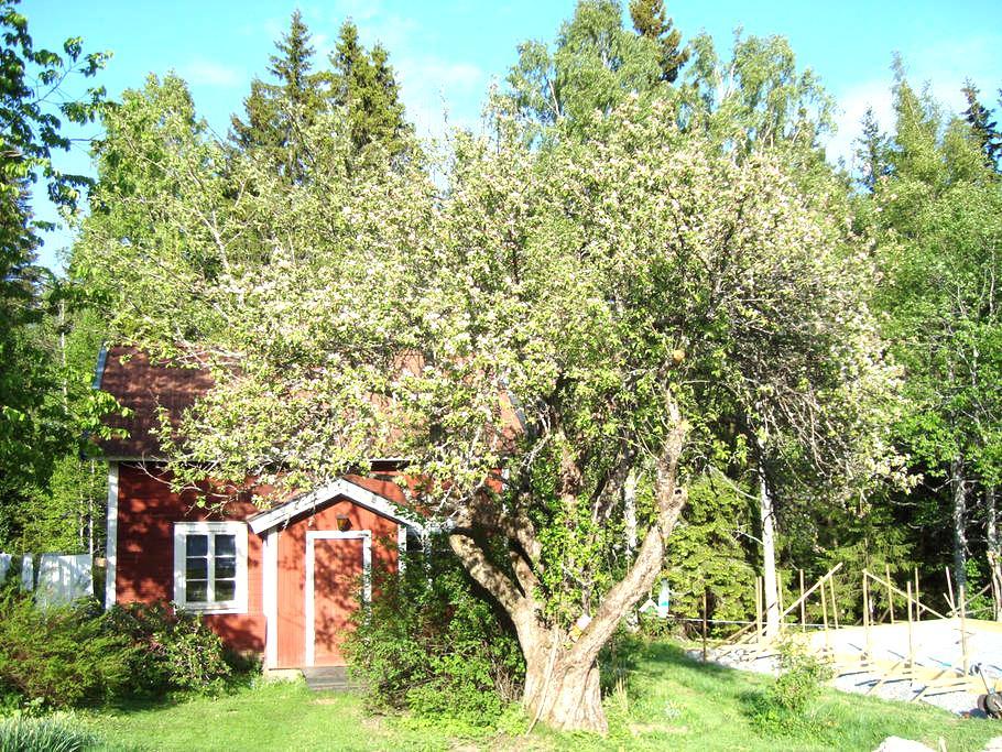 Enkel charmig stuga i Bergslagen - Lindesberg N