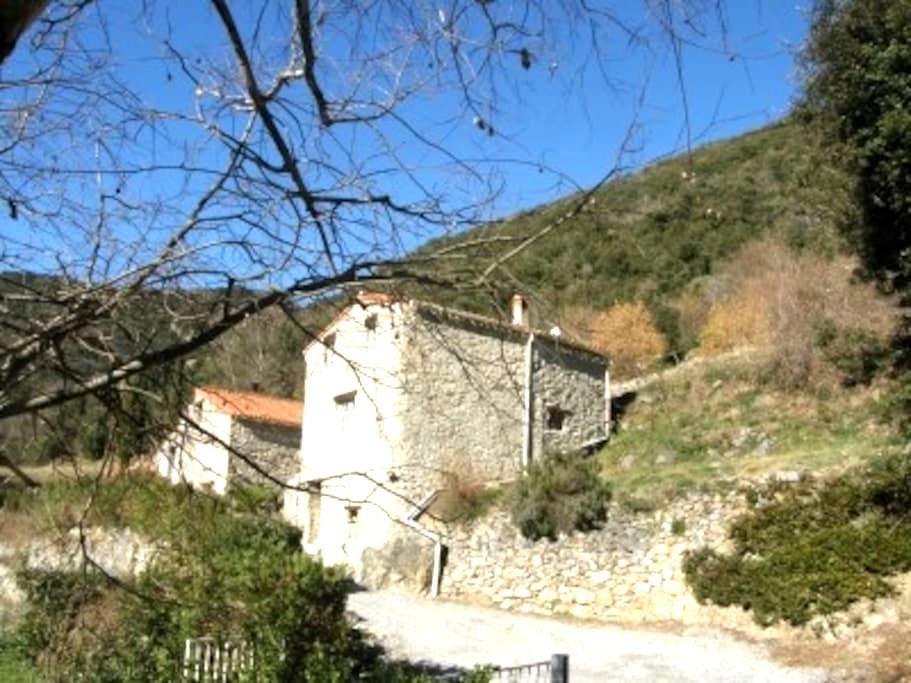 """Joli Gîte Rural en Pierre """"Mas Esperdenyes"""" - Arles"""