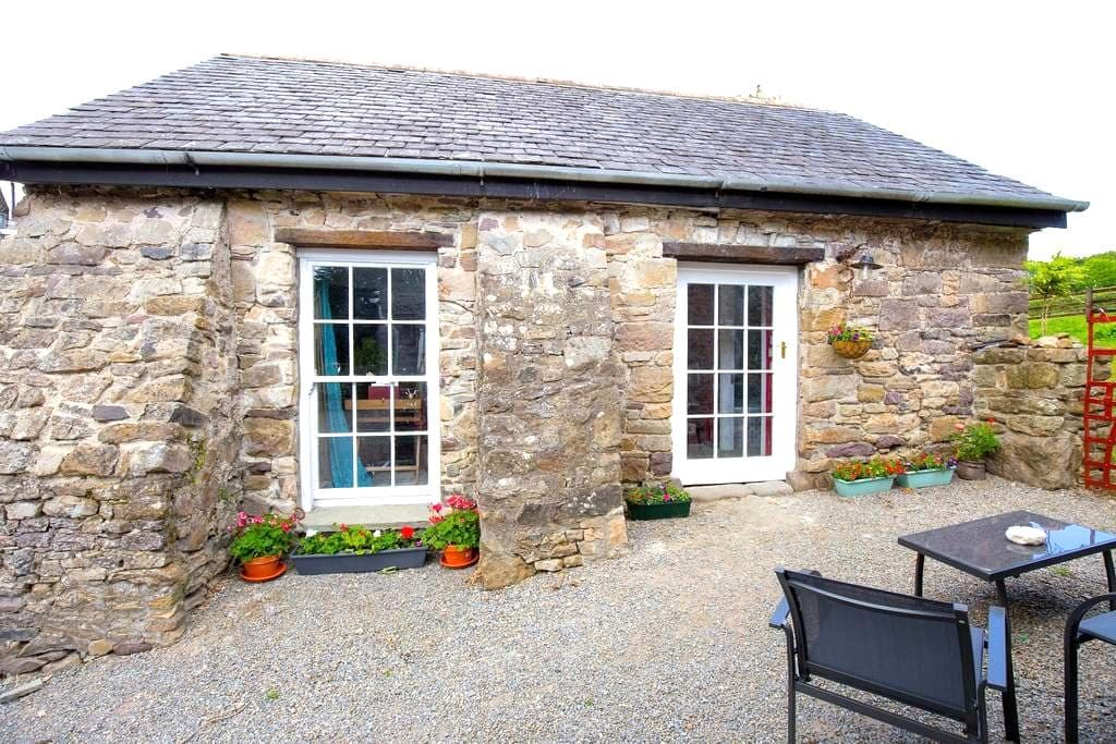 Cosy, Romantic Stone Cottage - Piltown