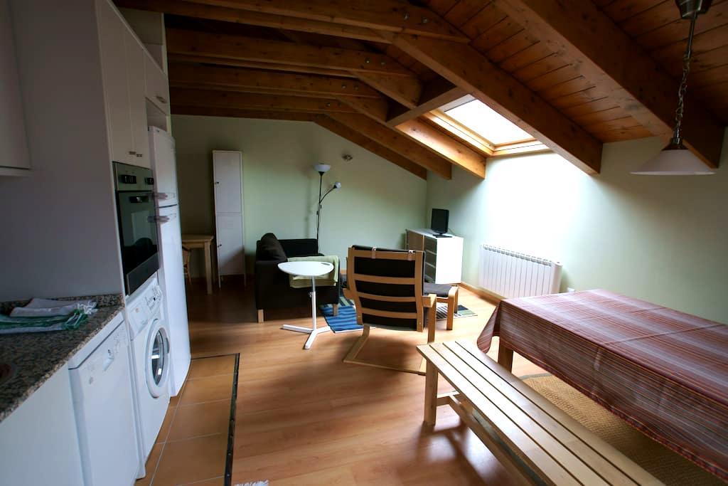 Cozy wodden attic Pirynees 2 double rooms - Castejón de Sos - Byt