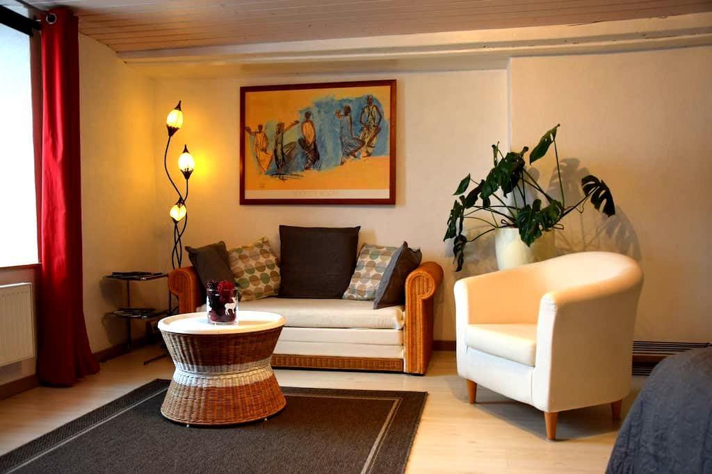 Beau et grand studio à 100m du lac de Neuchâtel - Chez-le-Bart - Apartemen