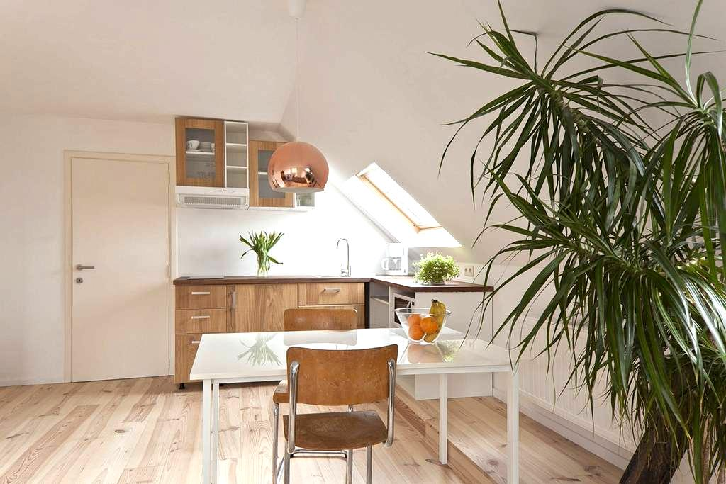 Bright apt. with free parking and free bicycles - Gent - Apartment