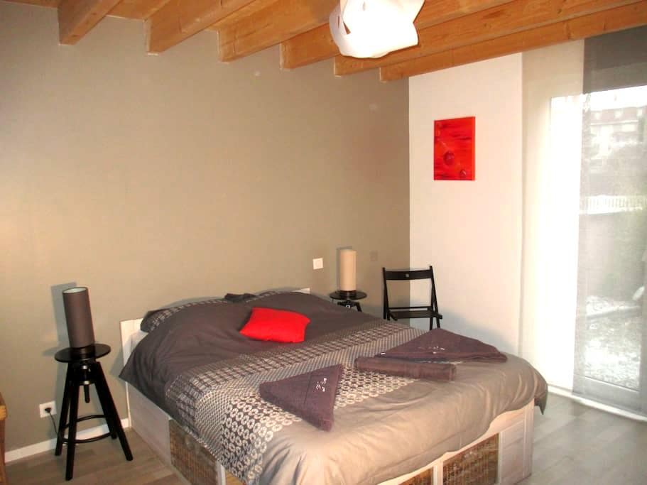Chambre avec salle de bain privée. Strasbourg 10' - Illkirch-Graffenstaden - Huis