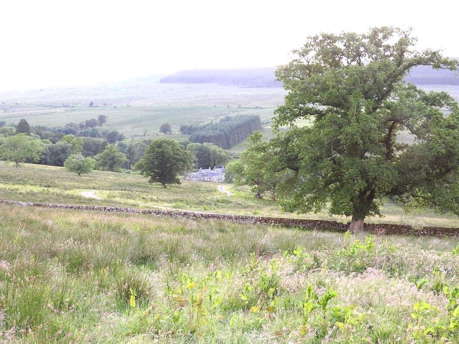 Cosy room, rural escape for Newcastleton, Kielder - Larriston - Oda + Kahvaltı