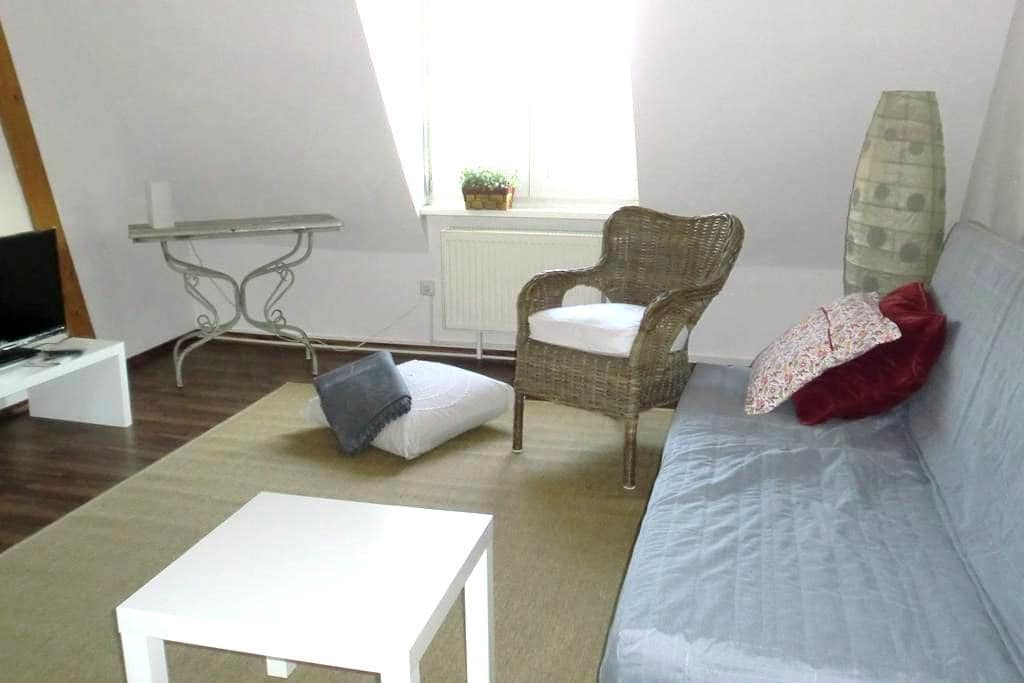 Flat in the old city. Close to SAP - Walldorf - Apartment
