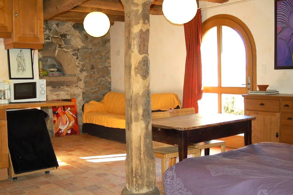Gite de charme dans ferme de 1660, calme, 25' Lyon - Chaussan - Hotel ekologiczny