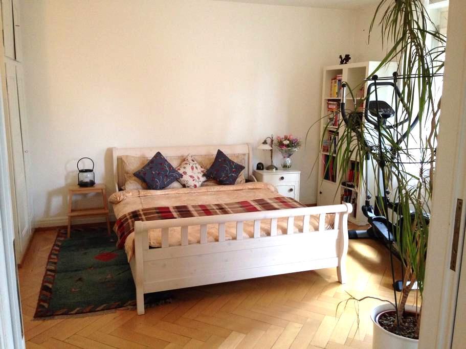 Sunny central flat - zentral & sonnig - Zürich - Appartement